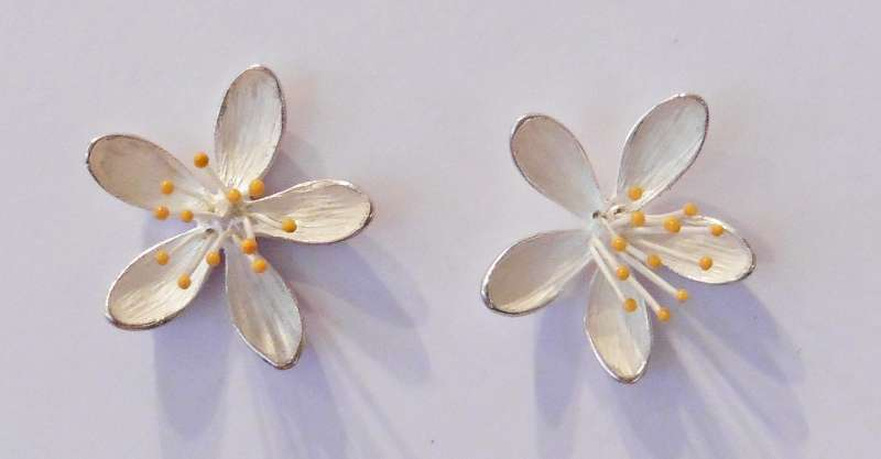 Hypericum stud earrings