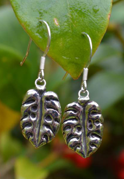 Cheese Plant Leaf Drop Earrings
