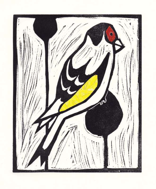 Goldfinch 7/60
